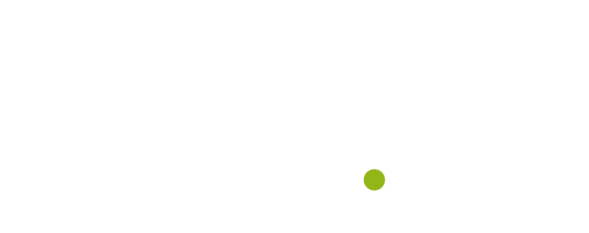 Flyingminds-siti_web-app-ecommerce-landing_page